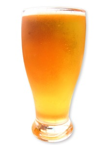 louisville beer blog - pint