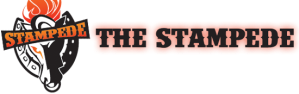 Stampede2013-logo